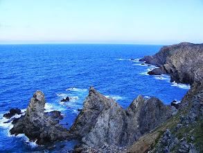 Photo: Réserve Marine de Banyuls-sur-Mer