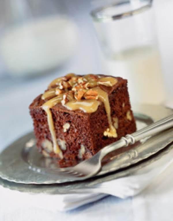 Turtle Snack Cake