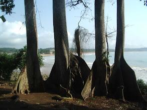 Photo: la plage de Busua, vue du Black Mamba
