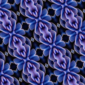 Flower Pattern by Virginia Howerton - Digital Art Abstract (  )