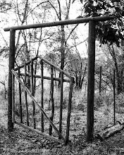 Photo: Garden Gate