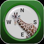 Jungle Compass Icon
