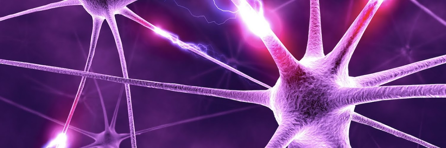 Nervous System Healing
