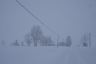 Photo: 北竜町の彩どり・12月の1