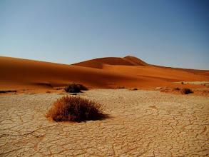 Photo: Désert du Namib, Deadvlei en Namibie