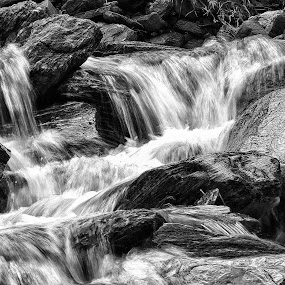 River flow by Aram Becker - Landscapes Waterscapes ( stream, b&w, wtare, blurr, long exposure, flow, stones, river )