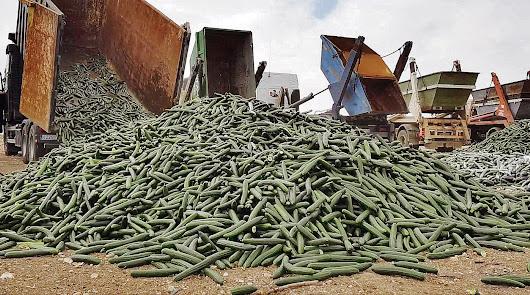 Nueva ley para perseguir la destrucción de los alimentos