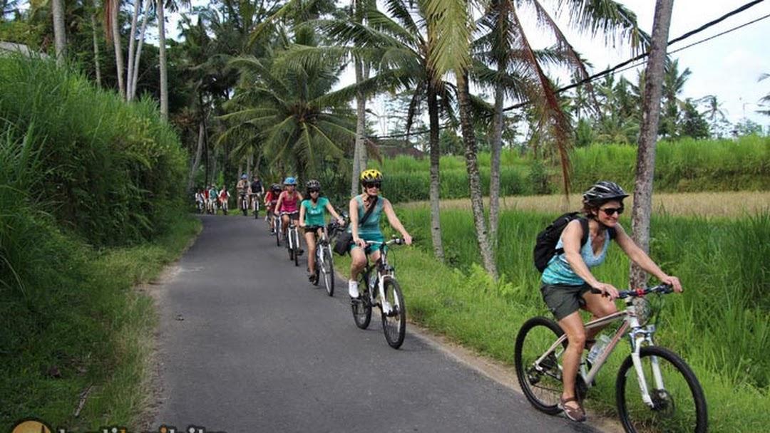 Ubud Bike Bali Countryside Cycling Tour Travel Agency