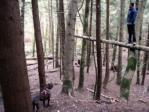 Photo: Friends in the Forest - Dave and Roman explore the woods around upper Chapman Creek