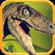 Raptor War