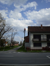 Photo: 06.04.2008 - Polet - Orijent