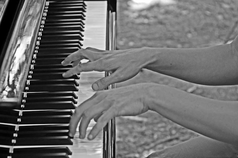 le dita corrono sulla tastiera di Luciano Fontebasso