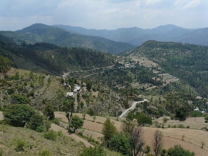 View from Naldehra