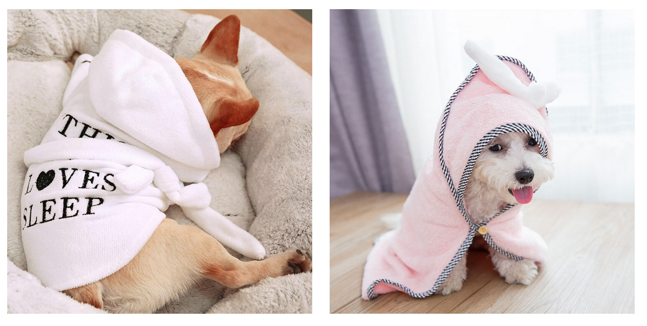 Papa Poooch | Cute puppies wearing dog jackets