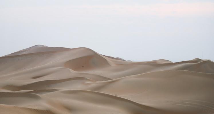 Deserto 🌵 sabbioso  di Renata Roattino@jhonninaphoto