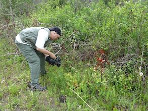 Photo: Siggi filming Sarracenia purpurea at Splinter Hill Bog Preserve in Alabama.