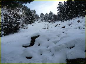 Photo: Chirat à droite de la cascade