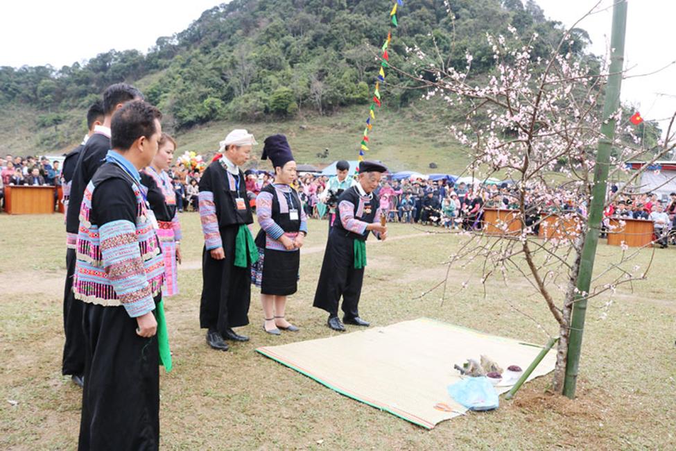 Lễ hội Gầu Tào của đồng bào Mông hai xã Hang Kia, Pà Cò năm 2020