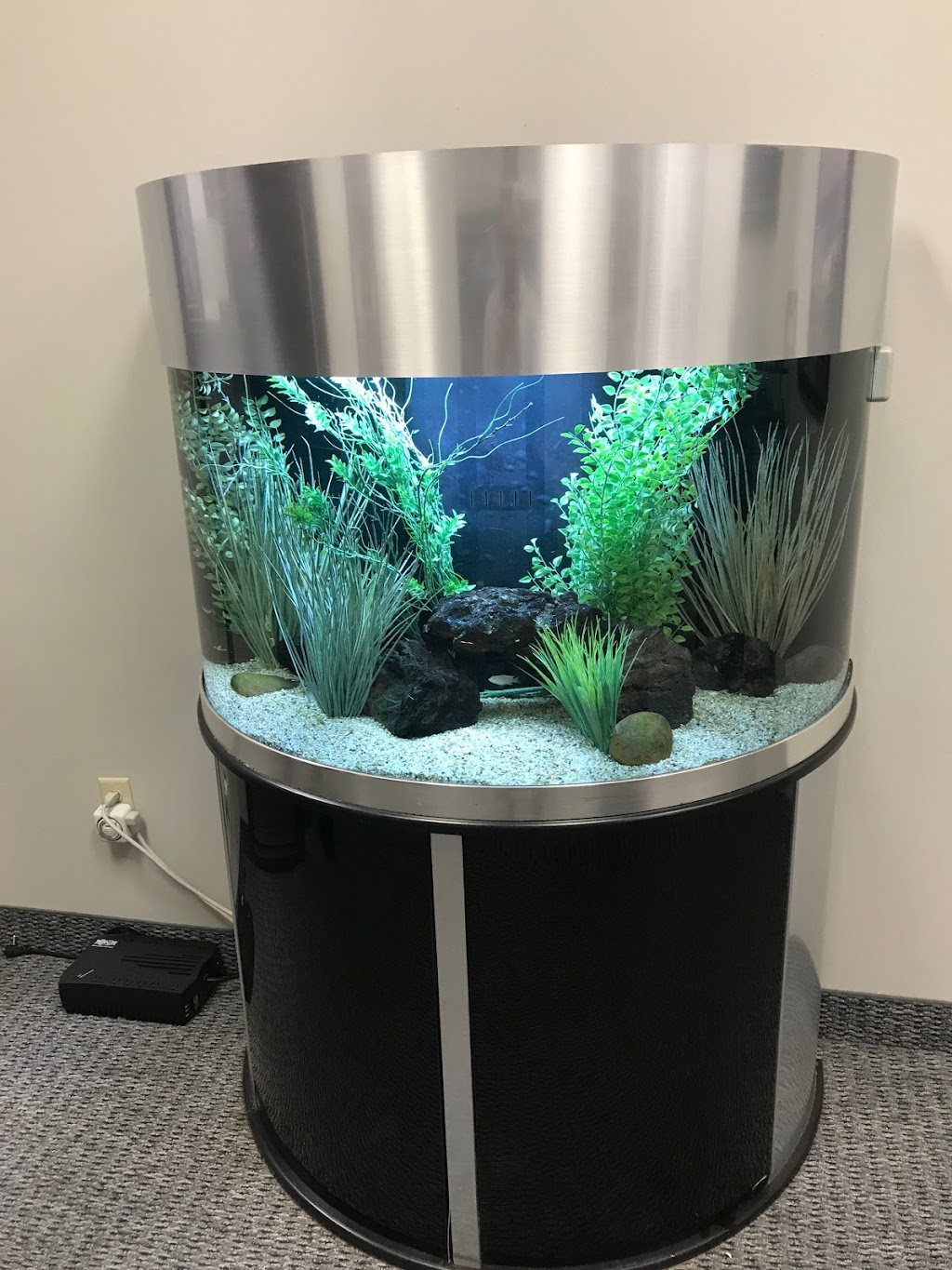 Aquarium service sells Fort Worth Dallas TX