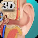 Ear Anatomy Pro. icon