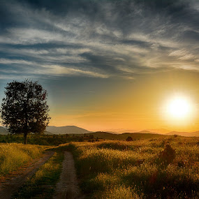 Sunset by Katerina Mavrovska - Landscapes Sunsets & Sunrises (  )