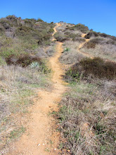 Photo: The route gets steep as it makes its final pitch from the west to Glendora Peak.