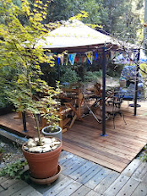 Photo: Lower teaching deck