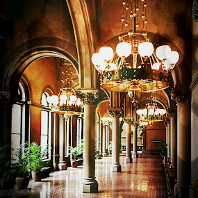Capitol 301 by Kevin Lucas - Buildings & Architecture Other Interior ( limestone, tiles, opulent, gothic revival, carvings, stone, hallway, architecture, pillars,  )