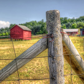 barn and fence by Fraya Replinger - Buildings & Architecture Other Exteriors ( farm, fence, post, red barn, wood, barn, grass )