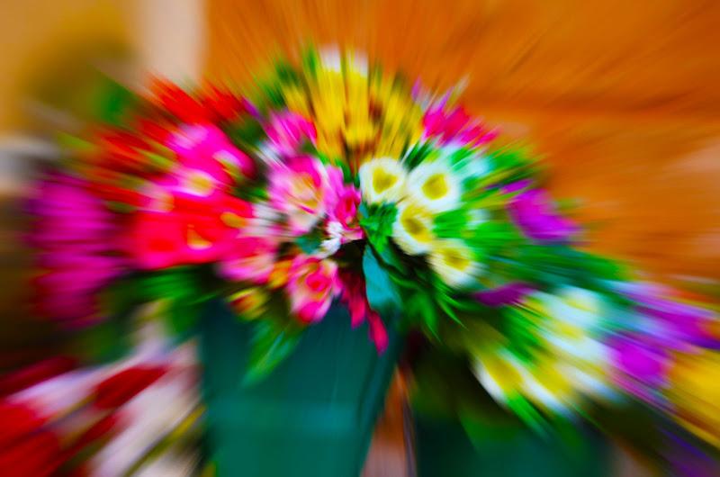 esplosione di colori di Elisabetta Castellano
