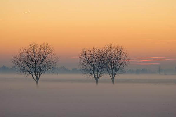 Scende il sole,sale la nebbia. di Daimon