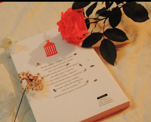 amore per la lettura di sonia_de_crescenzo