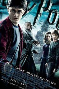 HARRY POTTER 6 – MELEZ PRENS