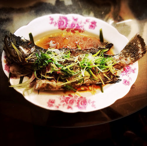 chinese, fish, Garoupa, hong kong, recipe, steamed, 石斑, 蒸