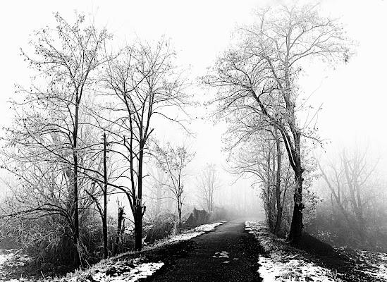 Passaggio nel freddo di Furlissima