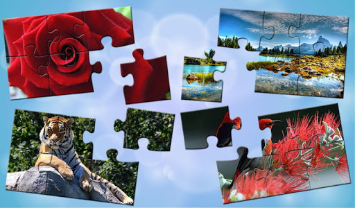 Puzzles for adults ss1