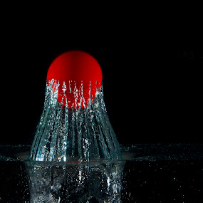 Frosted ball by Nick Beaudoin - Artistic Objects Toys ( water, niokn, ball, red, d700 )