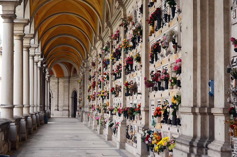 parma cimitero monumentale Della Villetta di nicoletta lindor