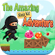 The Amazing NinjaKid Adventure
