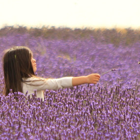 by Tony Walker - Babies & Children Children Candids ( field, girl, purple, bee, reach out, arm, lavender,  )