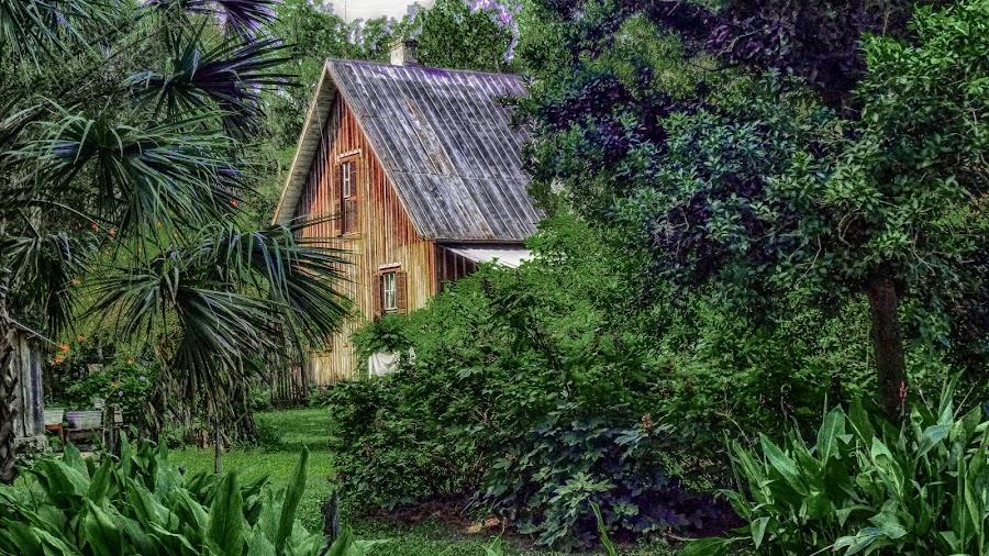 Dudley Farm, Fl. by Dave Walters - Buildings & Architecture Homes ( colors, h d r, dudley farm, fl. )