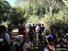 Photo: Entrada al sendero hacia Pico Blanco