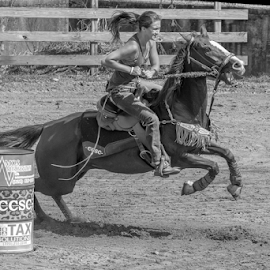 On to the next barrel by Joe Saladino - Black & White Sports ( horse, barrel race, competition, girl, rider )