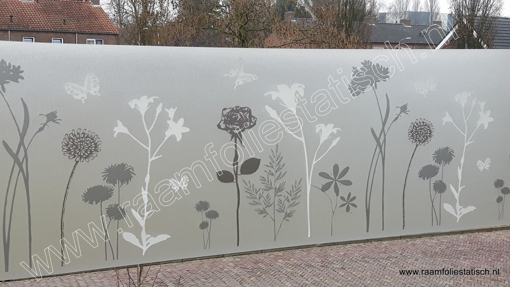 dcfix raamfolie blossom bloemen met vlinders kopen?