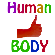 Human Body Parts For Kids