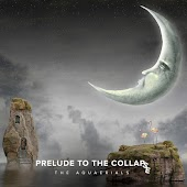 Prelude to the Collapse