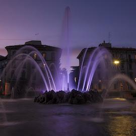 purple fountain by Fernando Ale - City,  Street & Park  Fountains