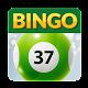 Bingo37 (game)