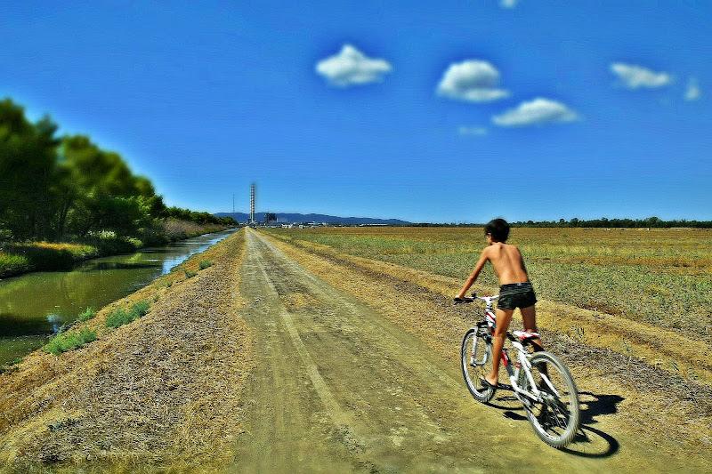 Bici in fuga di Luciano Fontebasso
