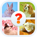 Animal Name: Male, Female, & Young (Animal Game) icon